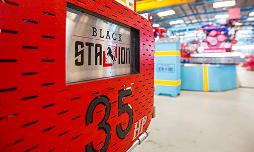 Sffeco Global launches Black Stallion